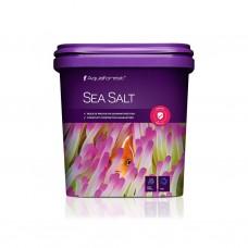 Sea Salt 海魚鹽 5KG