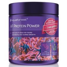 AF Protein Power 120g 觀賞魚成長魚糧