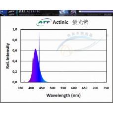 ATI Actinic 螢光紫 24w