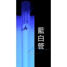 KZ 24W 14000k藍白管