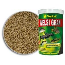 tropical(波蘭)  (琵琶糧) WELSI GRAN 高級底層琵琶綠藻糧 250ml