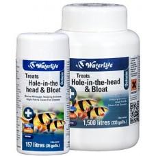 英國Waterlife (OCTOZIN頭洞病/寄生蟲病/腸胃感染/特效魚藥)21片装